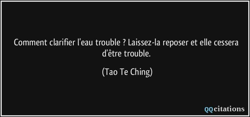 Quelle est votre meilleure citation, et quelle en est votre interprétation personnelle ? - Page 34 Citation-comment-clarifier-l-eau-trouble-laissez-la-reposer-et-elle-cessera-d-etre-trouble-tao-te-ching-170726
