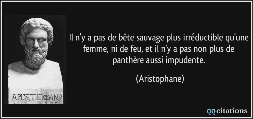 Image De Citation Citation Sur La Femme Sauvage