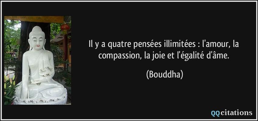 Fabuleux Il y a quatre pensées illimitées : l'amour, la compassion, la joie  ZL01