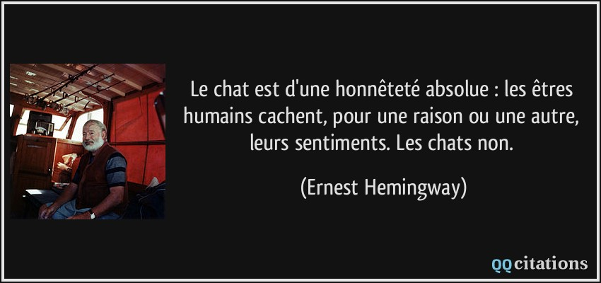 hemingway chat Going on a 'hemingway': the urban dictionary history of western the act of simultaneously spamming multiple chat channels with a greeting in order.