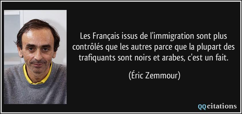 Les Francais Issus De L Immigration Sont Plus Controles Que Les