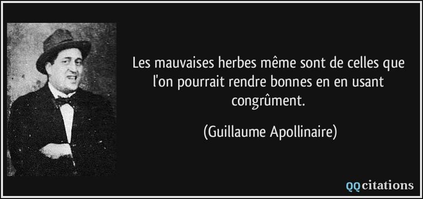 Citation de Guillaume Apollinaire