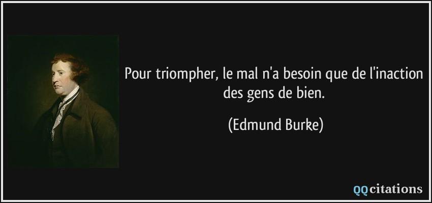 Présentation de Chuna56 - Page 2 Citation-pour-triompher-le-mal-n-a-besoin-que-de-l-inaction-des-gens-de-bien-edmund-burke-185219