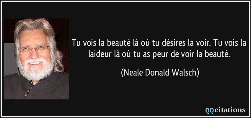 quote-tu-vois-la-beaute-la-ou-tu-desires-la-voir-tu-vois-la-laideur-la-ou-tu-as-peur-de-voir-la-neale-donald-walsch-201523
